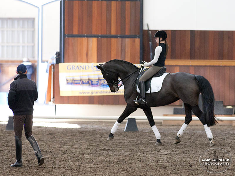 Maddy Madeline McKallip Kent dressage horse lesson training rehab rehabilitation
